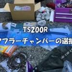 【アンケート】TS200Rのチャンバーマフラーの組み合わせ